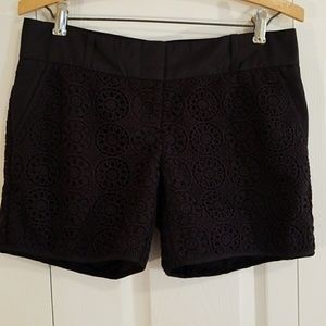 Limited Navy Blue Crocheted Shorts